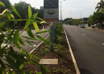 Cavenagh Street Reconstruction and Median Upgrading Daly Street to Searcy Street and Gardens Road Median Landscaping